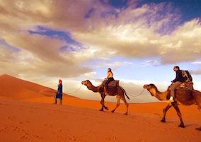 Fes to Fes desert Tour